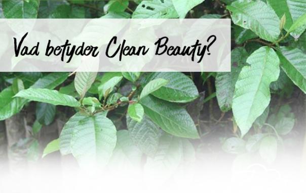Vad betyder ordet CLEAN inom beauty?